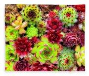 Succulent Garden Fleece Blanket