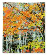 Sugar Maple Acer Saccharum In Autumn Fleece Blanket