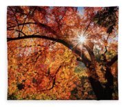 Sun Peaking Through The Autumn Colors  Fleece Blanket