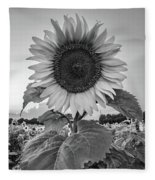 Sunflowers 10 Fleece Blanket