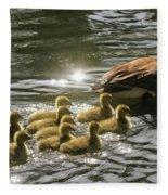 Sunlit Stroll Fleece Blanket