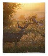 Sunset Deer Fleece Blanket