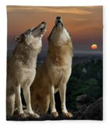 Sunset Harmony Fleece Blanket