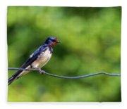 Swallow  Hirundo Rustica  Fleece Blanket