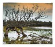 Swamp And Dead Tree Fleece Blanket