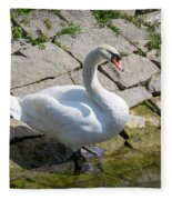 Swan Study 14 Fleece Blanket