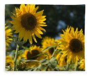 Sweet Sunflowers Fleece Blanket