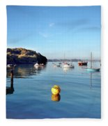 The Mylor Dolphin Fleece Blanket