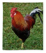 The Pose Of The Rooster Fleece Blanket