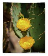 The Yellow Rose Of Arizona Fleece Blanket by Rick Furmanek