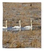 Three Trumpetor Swans 0629 Fleece Blanket
