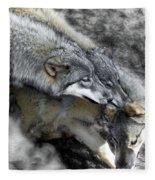 Timber Wolves Up Close Fleece Blanket