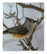 Titmouse Winter Morning Cutie  Fleece Blanket
