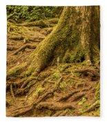 Trail Of Roots Fleece Blanket