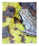Tree Frog On Yellow Leaf Fleece Blanket