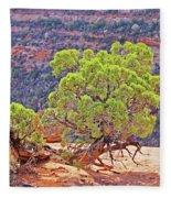 Trees Plateau Valley Colorado National Monument 2871 Fleece Blanket