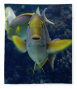 Tropical Fish Poses. Fleece Blanket