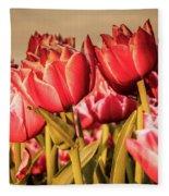 Tulip Fields Fleece Blanket