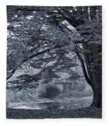 Twin Lake Mist Fleece Blanket