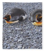 Two King Penguins By Alan M Hunt Fleece Blanket by Alan M Hunt