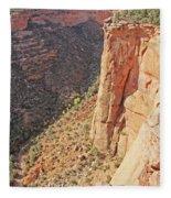 Valley Colorado National Monument 2884 Fleece Blanket