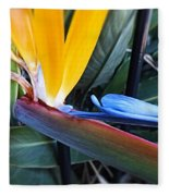 Vibrant Bird Of Paradise #2 Fleece Blanket