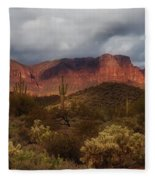 Virgin Desert Fleece Blanket by Rick Furmanek