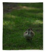 Waddling Ducklings Fleece Blanket