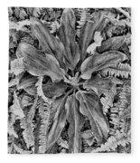 Waikiki Floral Study 5 Fleece Blanket