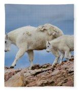 Walking The Ridge. Fleece Blanket