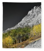 Waning Gibbous Moon Autumn Monarch Pass Bwsc Fleece Blanket