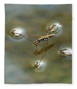 Water Bug Fleece Blanket