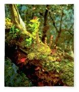Water Log Fleece Blanket