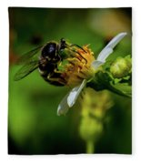 Western Sand Wasp Fleece Blanket