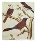 White Headed Munia, Double Coloured Seed Eater And Violet Eared Waxbill Fleece Blanket