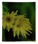 Wild Sunflowers In The Wind Fleece Blanket