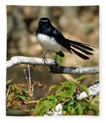 Willy Wagtail #1 Fleece Blanket