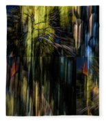 Wings Flying Out Of Time Fleece Blanket