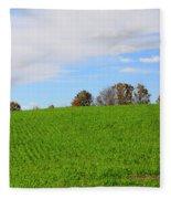 Winter Wheat In October In Southern Ontario Fleece Blanket