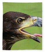 Young Bald Eagle 2 Fleece Blanket
