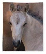 Young Colt Fleece Blanket