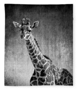 Young Giraffe Black And White Fleece Blanket