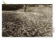 A Run Of Squawfish Stranded In Kelsey Creek Near Kelseyville Lake County April 29 1899 Carry-all Pouch