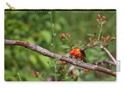 Berry Eating  Scarlet Tanager Carry-all Pouch