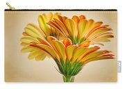 Daisies In Triplicate Carry-all Pouch