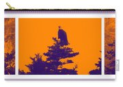 Eagle Scout At Sunset Carry-all Pouch