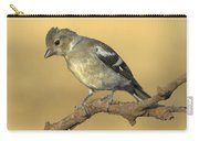 Female Chaffinch Carry-all Pouch