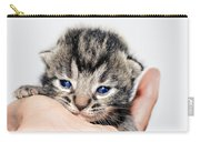 Kitten In A Hand Carry-all Pouch by Susan Leggett