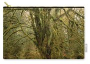 Moss-covered Big Leaf Maple Tree Carry-all Pouch