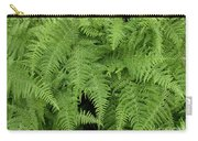 Mountain Ferns Of North Carolina Carry-all Pouch